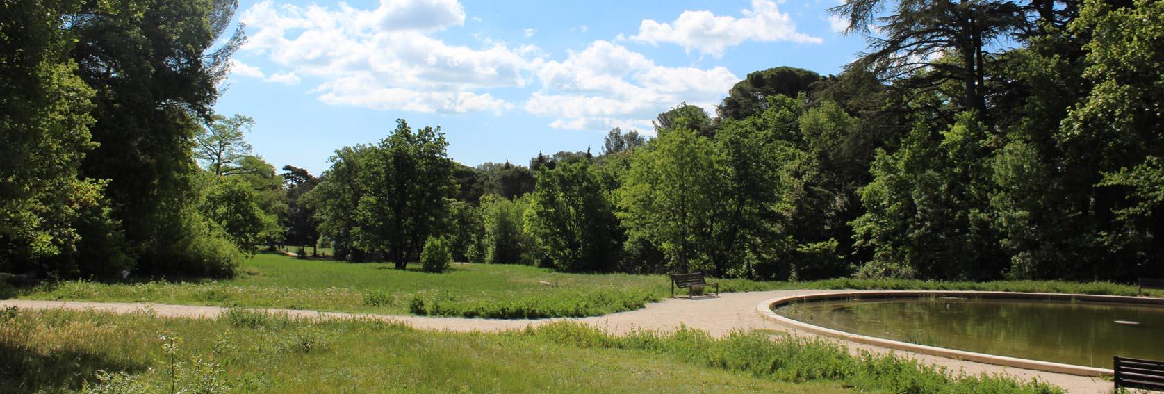 Parcs et jardins ville de montpellier for Parc du jard saint dizier