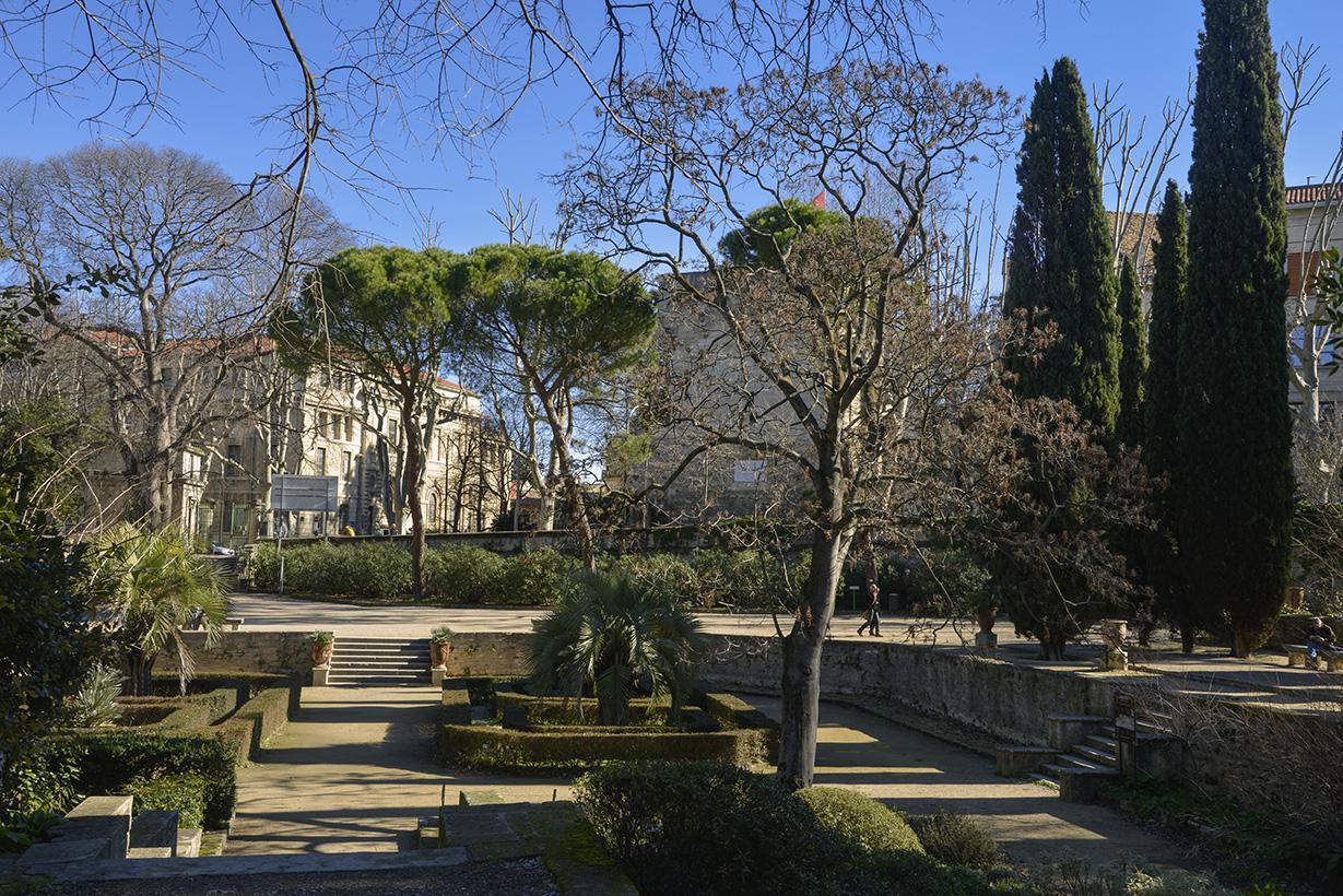 Montpellier en images ville de montpellier - Le jardin des plantes montpellier ...