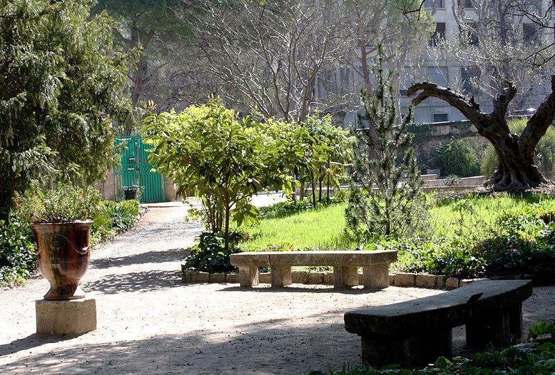 Parcs et jardins ville de montpellier - Jardin d essence montpellier ...