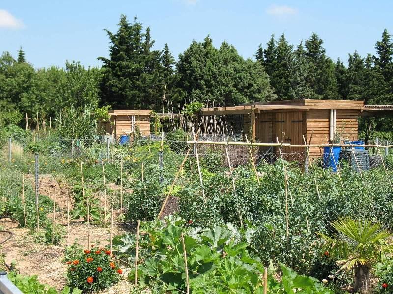 Les jardins familiaux ville de montpellier for Jardin familiaux