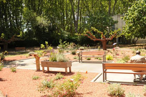 Un parc r habilit et un jardin th rapeutique l 39 ehpad for Jardin therapeutique